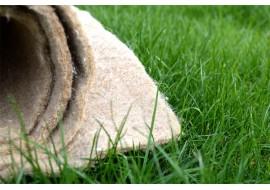 Идеальный газон при помощи биомата